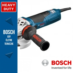 Bosch GWS 17-125 Inox Professional Sarokcsiszoló
