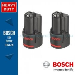 Bosch 2x GBA 12 V 2,0 Ah akkuegység