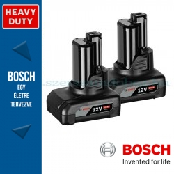 Bosch 2 x GBA 12V 6.0Ah akku