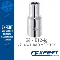 "Expert (by FACOM) 1/4"" DUGÓKULCSOK Belső Torx E4-E12-ig"