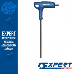 Expert (by FACOM) T-fogantyús HEX imbuszkulcs, gömbvégű - 5 mm