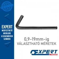 Expert (by FACOM) Rövid hatszögű imbuszkulcsok 0,9-19mm-ig